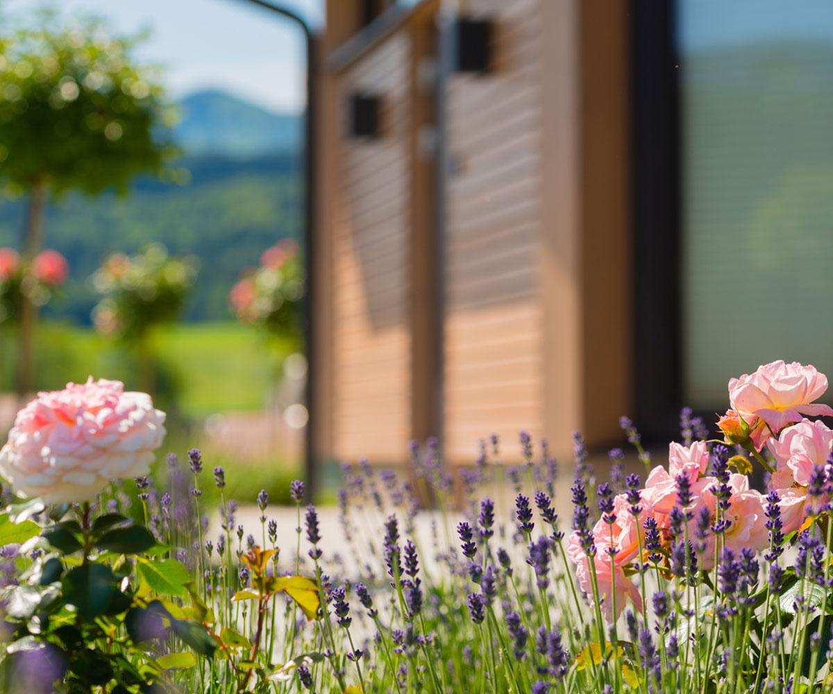Schoosleitner Bestattung Garten